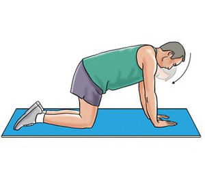 neck extension on hands and knees